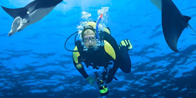 Diver and mantas