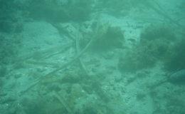 2006-comune-di-santantioco-ispezione-geologica-fondale5