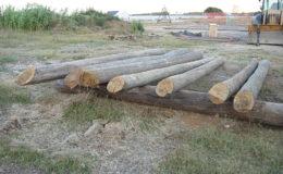2010-operae-srl-infissione-pali-in-legno-per-pontili2