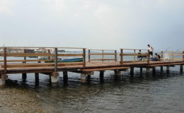 2010-operae-srl-infissione-pali-in-legno-per-pontili46
