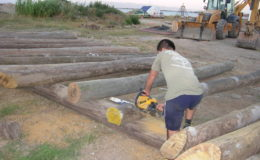 2010-operae-srl-infissione-pali-in-legno-per-pontili6