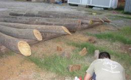 2010-operae-srl-infissione-pali-in-legno-per-pontili8